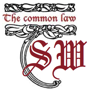 suewrongdoers-logo