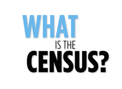 Census. What EXACTLY is Mandatory?
